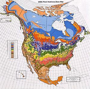 USDA Hardiness Zones in North America